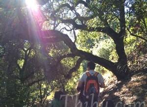 HikingVO